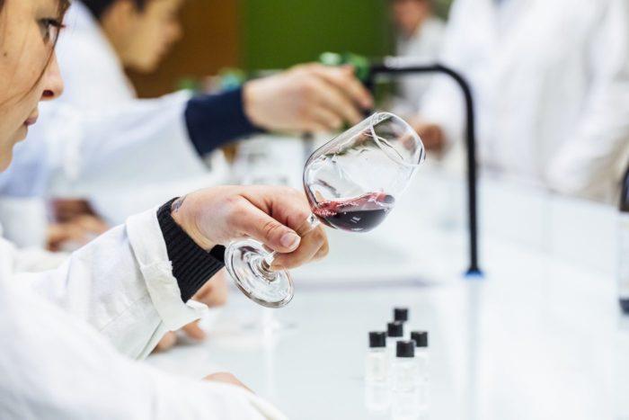 formation viticole lycée Edgard Pisani à Montreuil-Bellay